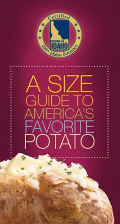 Size Guide Brochure