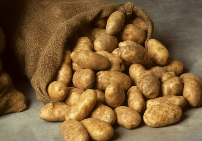 Potato Storage & Handling Tips