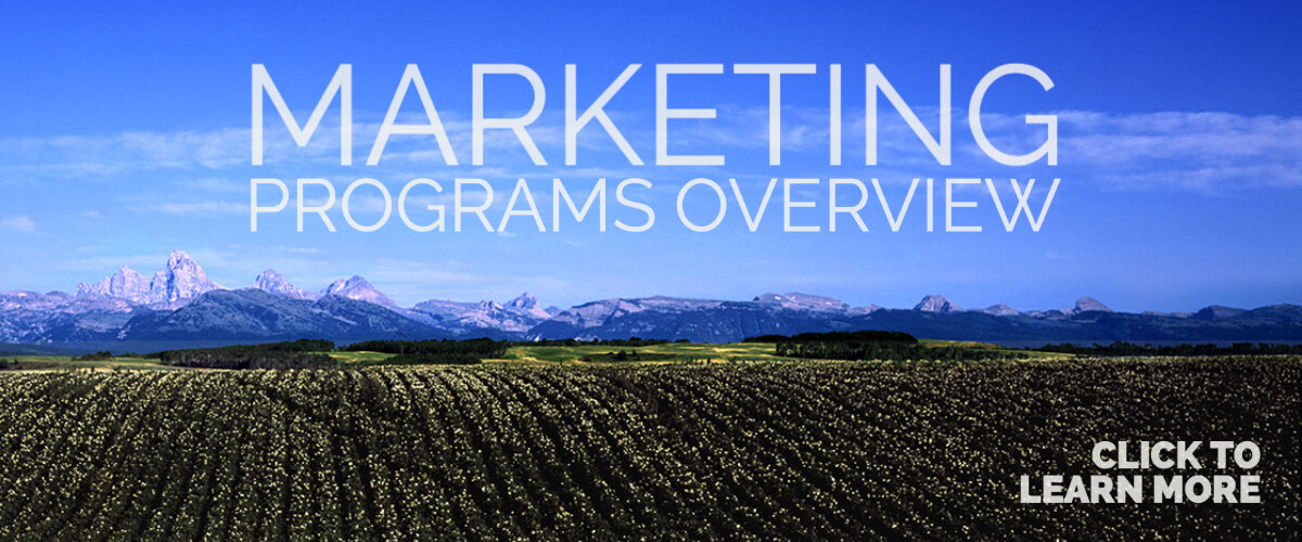 Industry Marketing Programs Page
