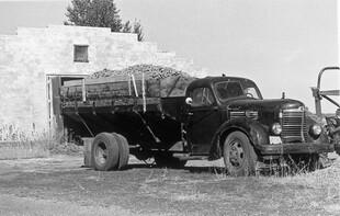 Truck carrying potatoes