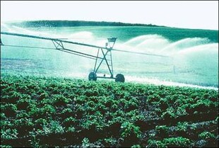 Carefully measured irrigation of Idaho potato field.