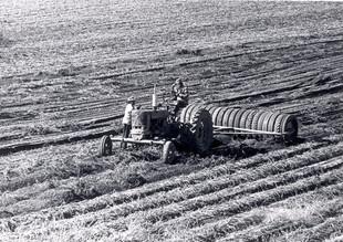 Tractor plowing potato field